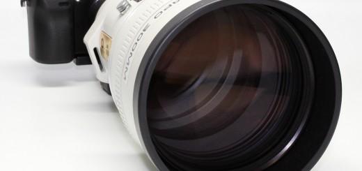 NEX 7 + Minolta AF 300 f2.8 APO G HS + Canon EF 300 f2.8 L IS + Canon FD 300 f4 L