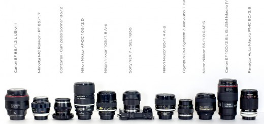 NOV 20 Portrait lens - Which One? 21-30