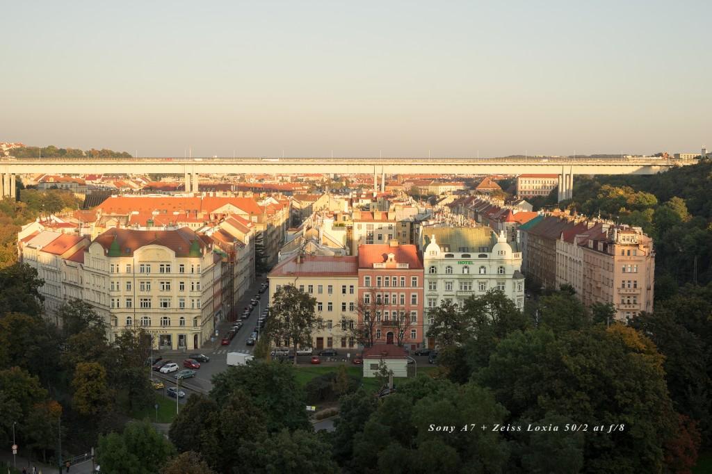 Loxia_Prague_01_f8_08009