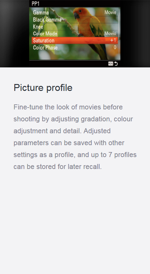 Features_17_pictureprofile