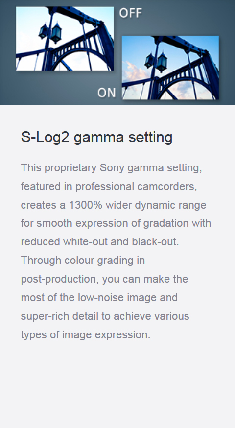 Features_19_S-log2gamma