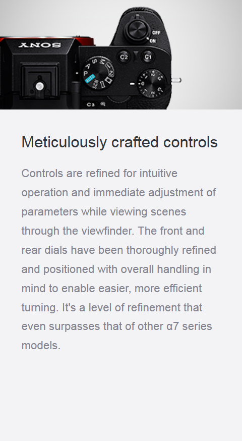 Features_22_crafted-controls