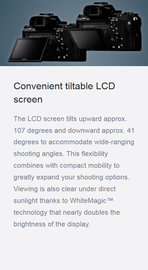 Features_24_tiltableLCD