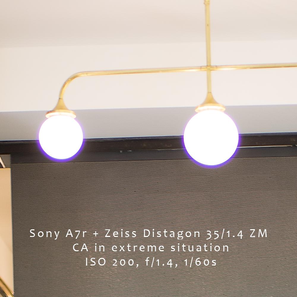 Sony_A7r_ZM_35_14_14_Crop