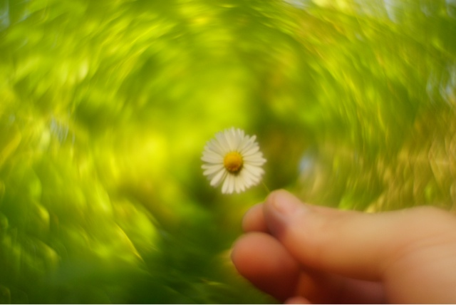 15 beautiful tips and examples of bokeh photography 121clicks. Com.